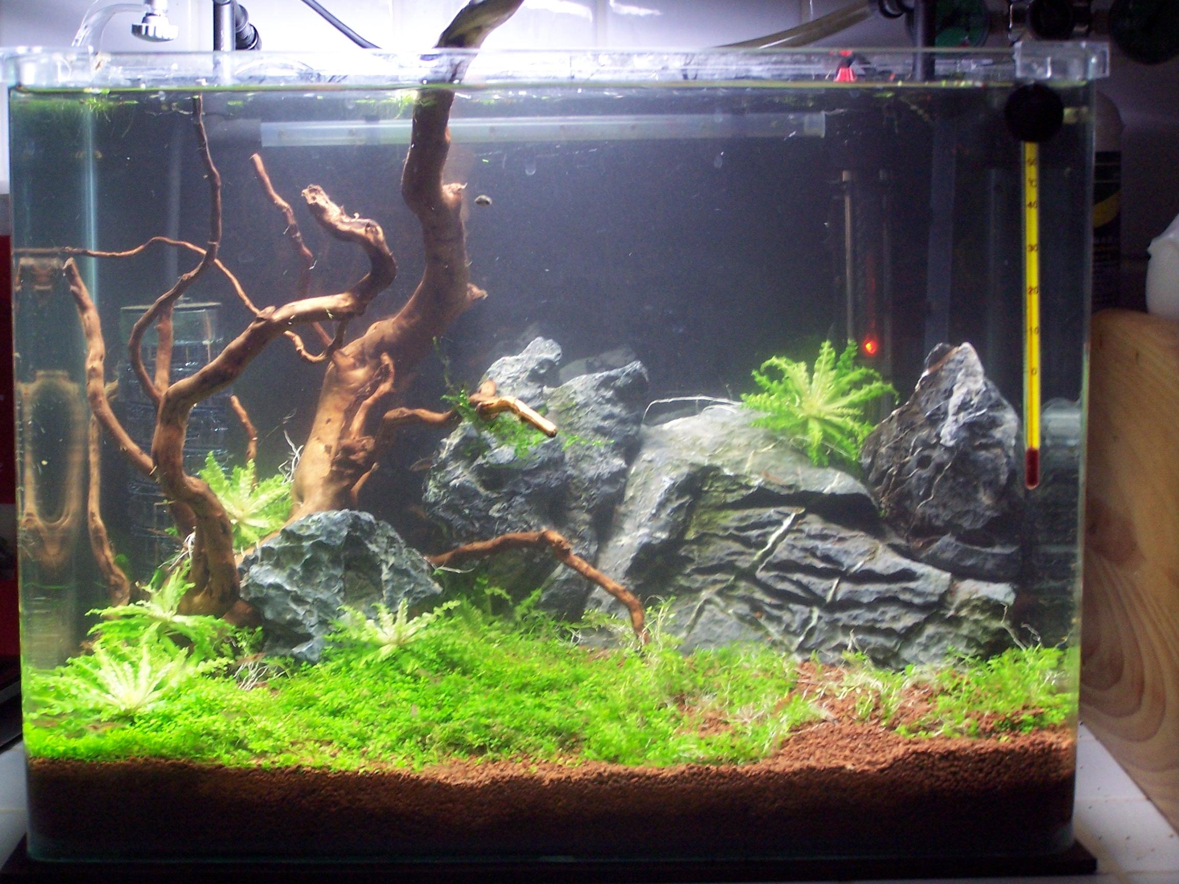 Крышки для аквариумов своими руками фото