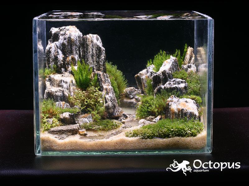 Дизайн оформление аквариумов фото
