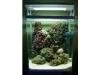 aqua-one-marine-nano-095ca