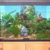 Как устранить течь в аквариуме?