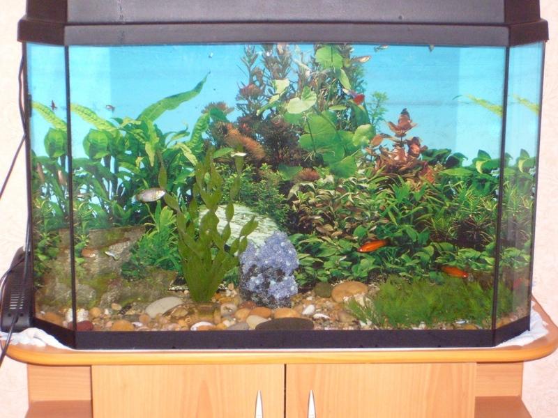 как устранить течь в аквариуме