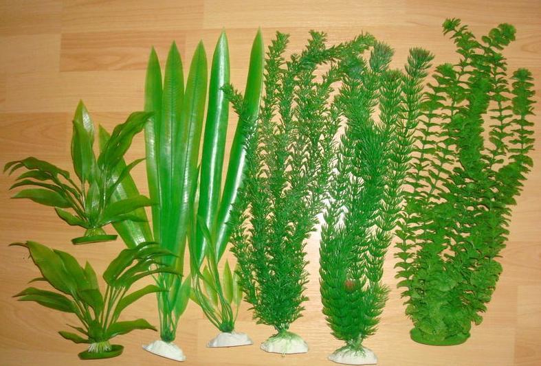о синтетических растениях
