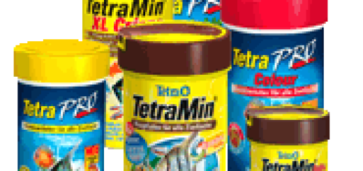обзор кормов Тетра