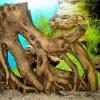 Как подготовить корягу для аквариума