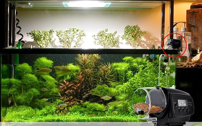 Автоматический аквариум своими руками