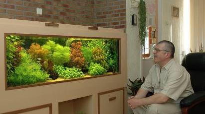 голландский_аквариум